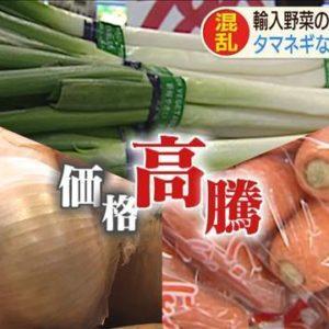 コロナショック 輸入野菜 のほとんどが「中国産」 玉ねぎなど入荷なく高騰 ビニール傘も